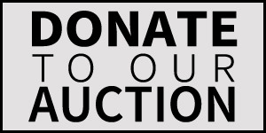 donate-auction